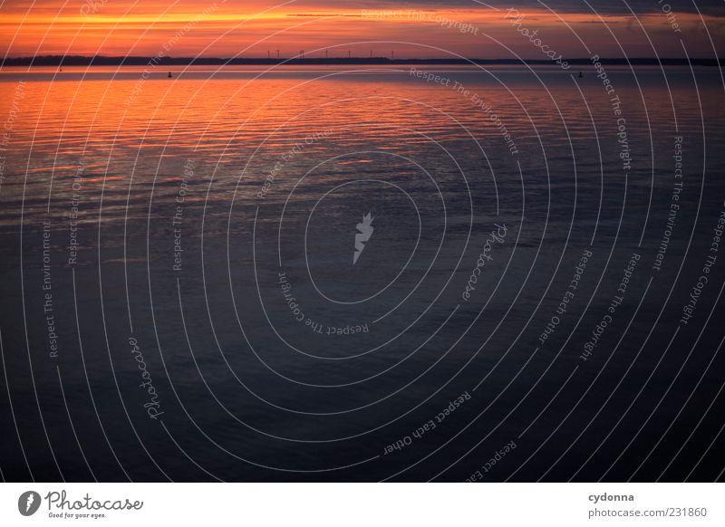 Spiegel harmonisch Wohlgefühl Erholung ruhig Ferne Freiheit Umwelt Natur Landschaft Wasser Himmel Horizont Sonnenaufgang Sonnenuntergang Seeufer Bewegung