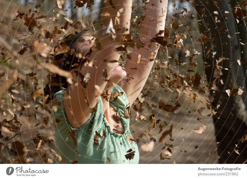 Laubregen feminin Junge Frau Jugendliche 1 Mensch 18-30 Jahre Erwachsene Natur Herbst Schönes Wetter Blatt Erholung genießen Lächeln Fröhlichkeit Glück braun