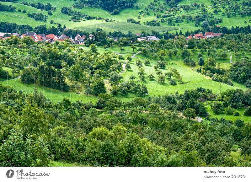 's Ländle Natur grün Ferien & Urlaub & Reisen Sommer ruhig Haus Wald Wiese Landschaft Tourismus Klima Hügel Dorf Schönes Wetter Landschaftsformen schwäbisch