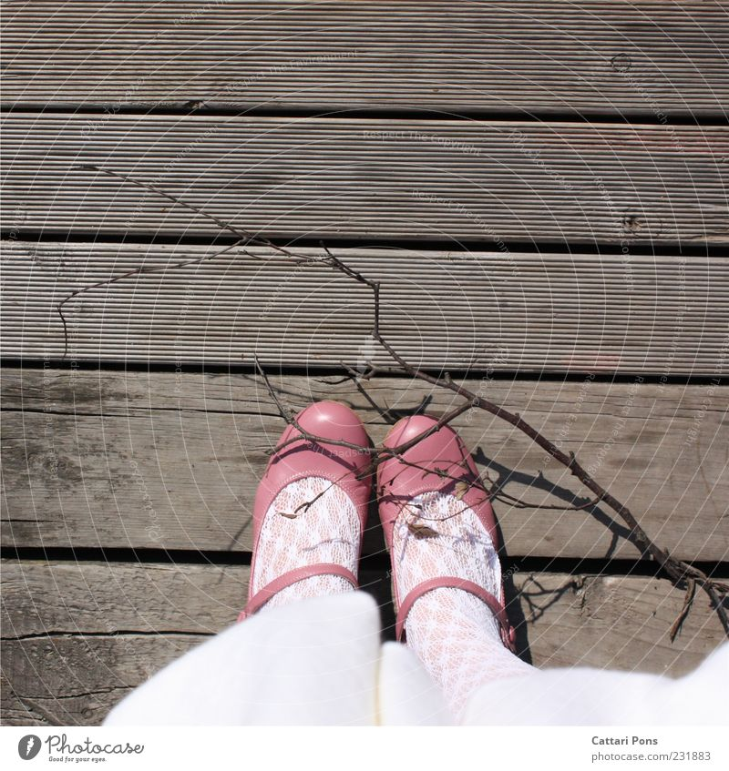 Virgin Road Mensch weiß Mädchen feminin Holz Fuß Kindheit Schuhe rosa stehen Ast Kitsch bleich Kind Strumpfhose Holzfußboden