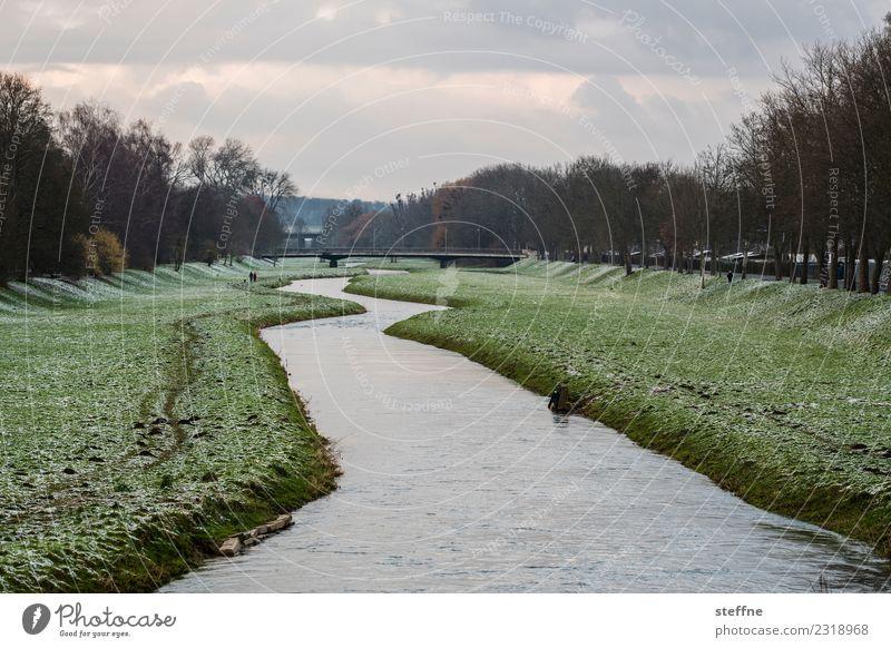 Winterlandschaft mit Fluss Schnee Wiese Flussufer kalt Winterspaziergang Göttingen Fluß Leine Farbfoto Außenaufnahme Textfreiraum oben Textfreiraum unten