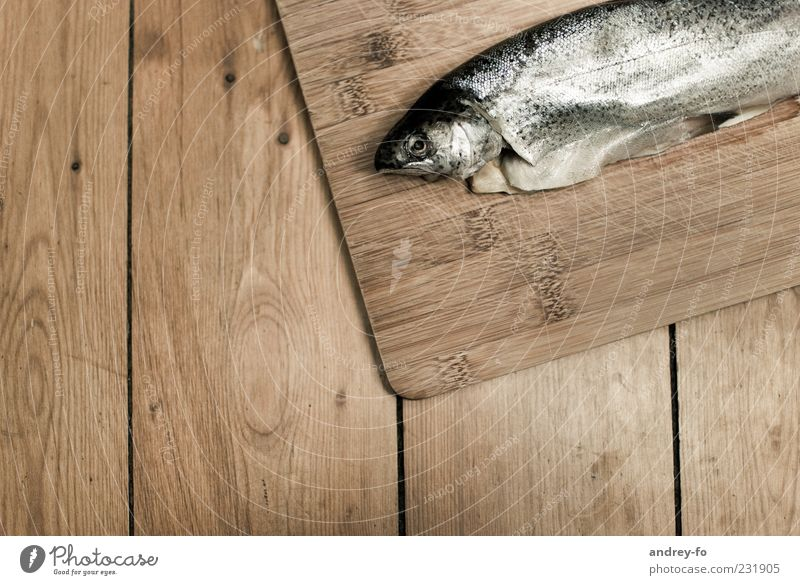 Fisch Tier Holz braun liegen Lebensmittel nass frisch Tisch Holzbrett Bioprodukte Glätte Maserung Tischplatte Fischauge