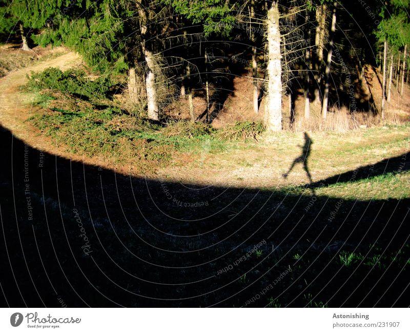 der Schattenkrieger Mensch Natur grün Baum Pflanze schwarz Wald gelb Wiese Umwelt Landschaft Gras Wege & Pfade Beine Fuß Wetter