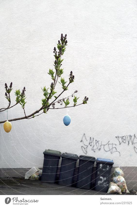 cityeaster impression Haus Mauer Wand Fassade Ostern Baum Ei Osterei Müll Müllbehälter Hinterhof Graffiti geschmückt Farbfoto mehrfarbig Außenaufnahme Tag