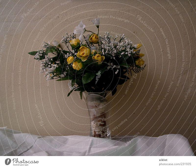 Blumen gelb Haus Wand weiß Glaskrug Dekoration & Verzierung Freude Zärtlichkeit Ordnung geblümt Kunststoff künstlich Stoff Handtuch Wandel & Veränderung Farbe
