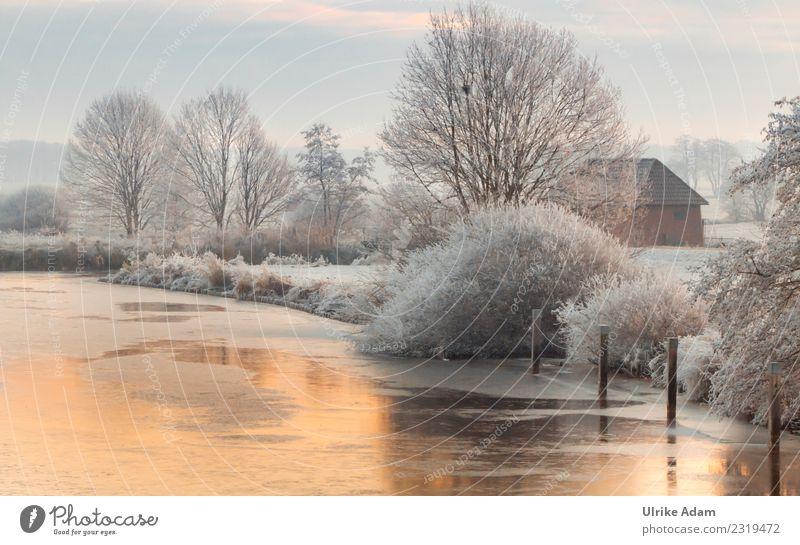 Winterliches Teufelsmoor bei Sonnenaufgang harmonisch Wohlgefühl Zufriedenheit Erholung ruhig Dekoration & Verzierung Tapete Natur Landschaft Schönes Wetter Eis