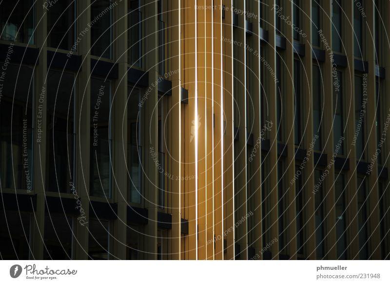 Metallfassade Architektur gold Fassade Hochhaus verfaulen Bauwerk Fensterfront