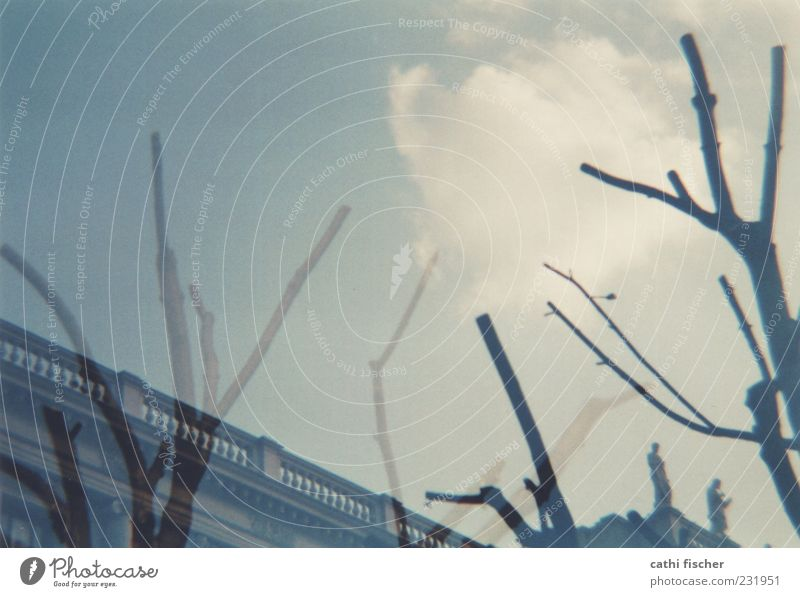 impression Himmel blau Baum Wolken Holz grau Gebäude Klima Ast Bauwerk Geländer analog Doppelbelichtung geschnitten Geäst