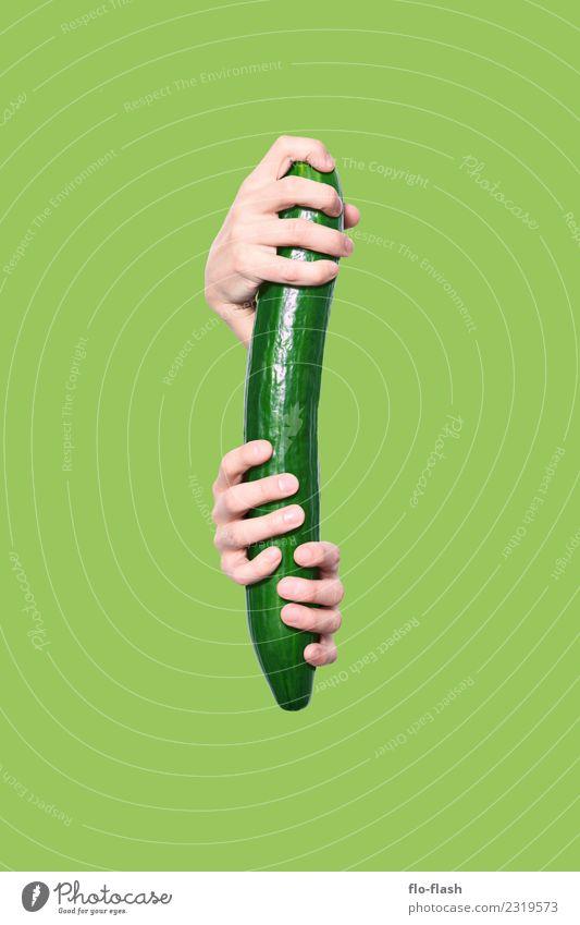 PRALLE GURKE Lebensmittel Gemüse Salat Salatbeilage Ernährung Bioprodukte Vegetarische Ernährung Diät Fasten Fingerfood Gesundheit Übergewicht Wellness Bildung