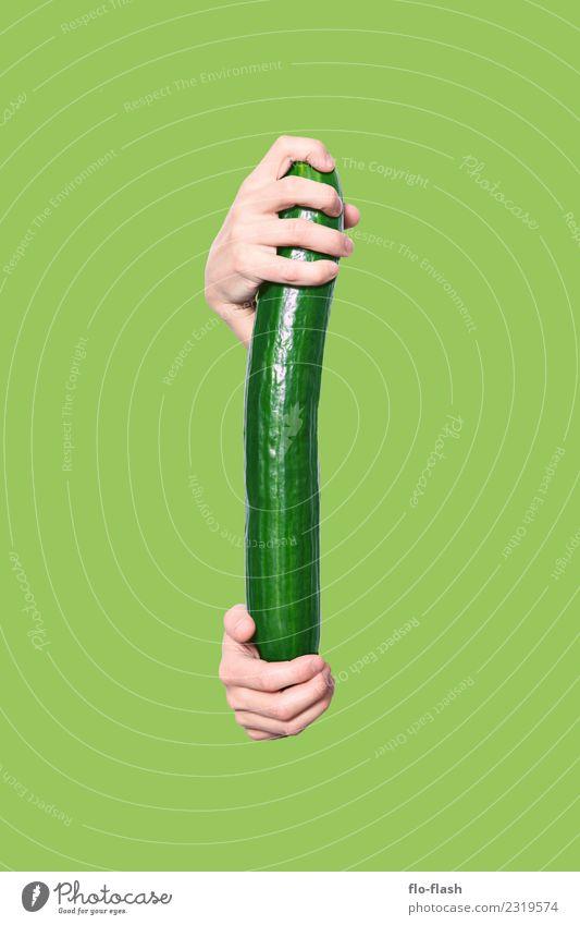 EINE GRÜNE GURKE Lebensmittel Gemüse Salat Salatbeilage Ernährung Bioprodukte Vegetarische Ernährung Diät Fasten Freude Gesundheit Gesunde Ernährung Wellness