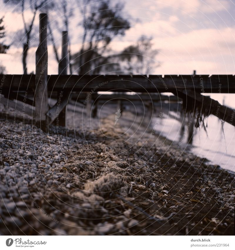 Steg Strand Wolken ruhig Holz Stein Traurigkeit Seeufer Bucht