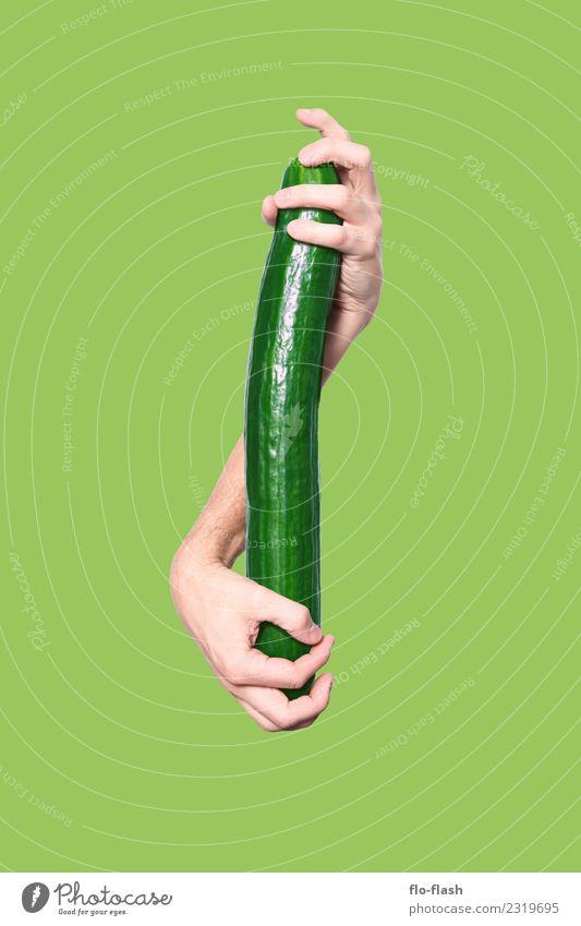 GURKE ohne STACHELN Lebensmittel Gemüse Salat Salatbeilage Ernährung Bioprodukte Vegetarische Ernährung Diät Fasten Freude Gesundheit Wellness Feste & Feiern