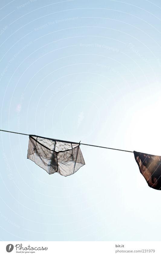 zur Durchsicht Himmel Wolkenloser Himmel Sonnenlicht Schönes Wetter Bekleidung Unterwäsche hängen nass Sauberkeit blau grau schwarz Begierde Lust Wäsche