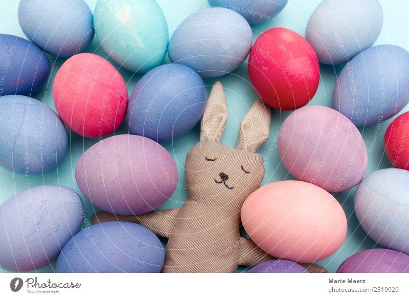 Müder Osterhase mit vielen bunten Eiern Freude Ostern Hase & Kaninchen Arbeit & Erwerbstätigkeit Essen Feste & Feiern schlafen außergewöhnlich lustig niedlich