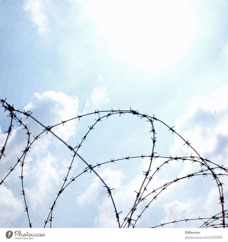 sicher ist sicher Himmel Wolken Metall leuchten Sicherheit bedrohlich Zeichen Schönes Wetter Skulptur Barriere Draht Rolle Defensive Terror Stacheldraht abwehrend