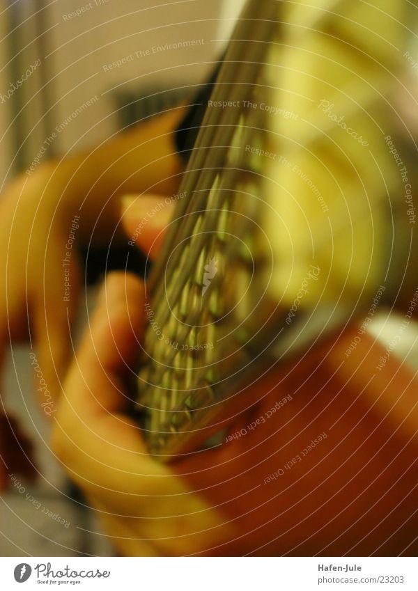 Siggi am Bass Saite Finger Hand Spielen Freizeit & Hobby Kontrabass Detailaufnahme Musik Schnur Groove