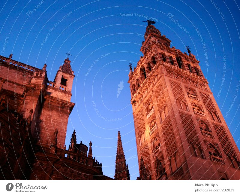 Meisterwerk in Sevilla Himmel Stadt Ferien & Urlaub & Reisen Architektur Gebäude Religion & Glaube ästhetisch Tourismus Europa leuchten Kirche Turm Kultur Bauwerk historisch Spanien