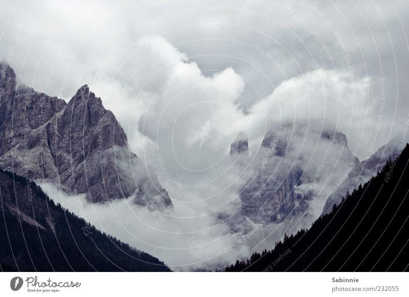 11 + 12 Tourismus Berge u. Gebirge Natur Landschaft Urelemente Himmel Wolken Sommer Wetter Wald Felsen Alpen Sextener Dolomiten Gipfel Wolkenformation Stein