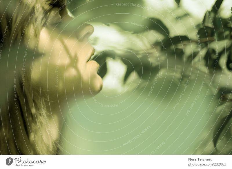 Nutzen Mensch Natur grün schön Pflanze Sommer Blatt Gesicht Erholung feminin Umwelt Gefühle Kopf Haare & Frisuren Frühling träumen