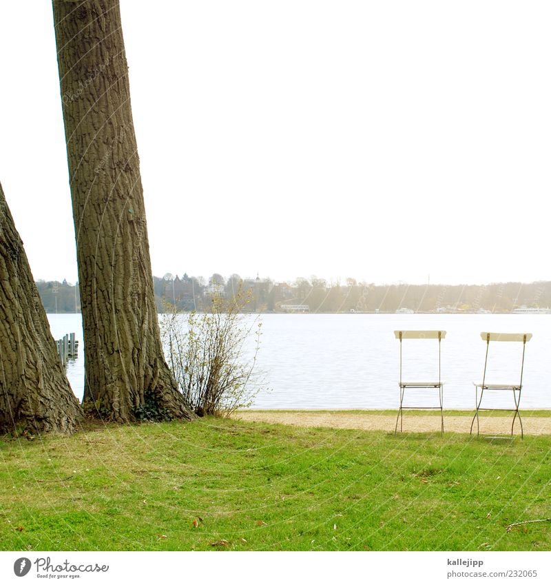 das doppelte lottchen Himmel Natur Wasser Baum Sonne Ferne Wiese Umwelt Landschaft Freiheit Küste Stil Frühling See Park elegant