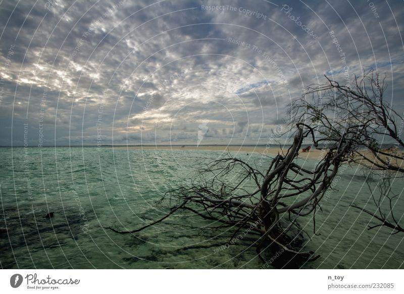 Schon wieder bewöllkt... :-( Himmel Natur Wasser Baum Sommer Meer Strand Wolken Ferne Sand Küste Insel Ast fantastisch türkis Wasseroberfläche