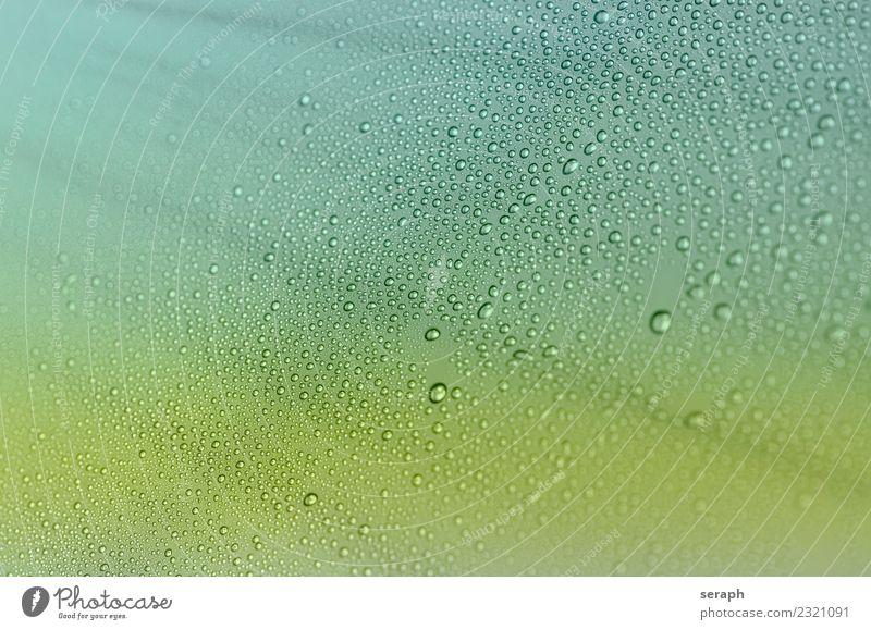 Tropfen Wassertropfen tropisch mehrfarbig Lichterscheinung Lichtstrahl Beleuchtung kondensieren Tau Regen feucht Wärme Blase Luftblase Schaumblase glänzend