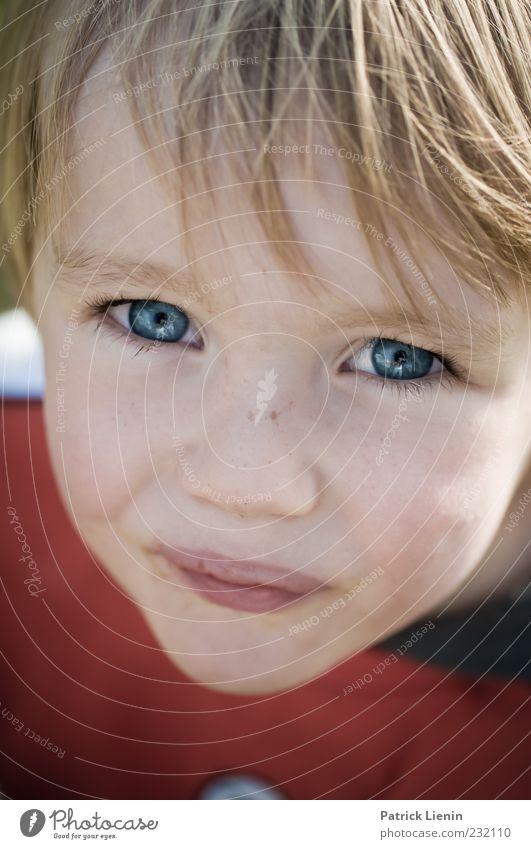 Kleiner Fratz [II] Mensch Kind blau schön Junge Kopf Glück Stimmung hell Kindheit Zufriedenheit blond maskulin Fröhlichkeit authentisch Neugier