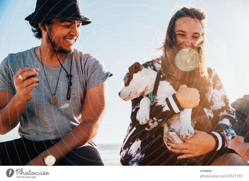 Glückliches junges erwachsenes Paar mit süßem Welpen Freude Spielen Sommer Frau Erwachsene Familie & Verwandtschaft Freundschaft Tier Haustier Hund Liebe