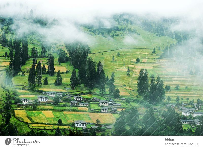 Landschaft mit nebligen Feldern und Wäldern Ferien & Urlaub & Reisen Sommer Berge u. Gebirge Häusliches Leben Haus Natur Wolken Herbst Nebel Baum Gras Wald Dorf
