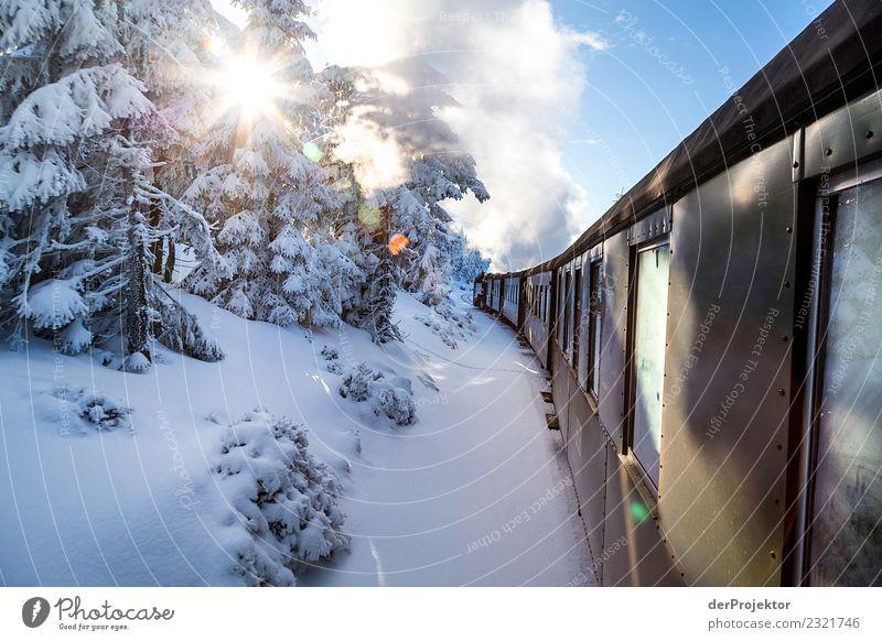 Der Brocken-Orient-Express Ferien & Urlaub & Reisen Tourismus Ausflug Abenteuer Freiheit Winterurlaub Umwelt Natur Landschaft Schönes Wetter Schnee