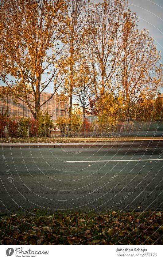 vorbei Natur grün Baum rot Blatt Haus gelb Straße Herbst Gebäude braun gold Verkehr ästhetisch Hochhaus Streifen