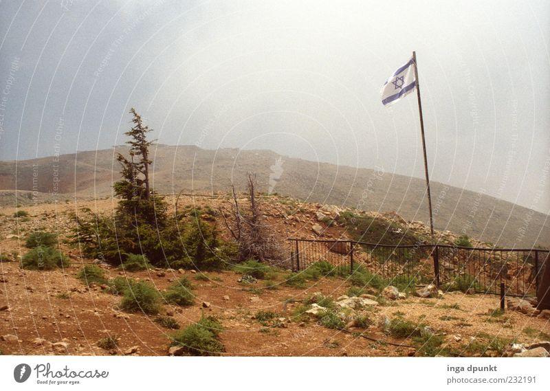 Golan heights Berge u. Gebirge Naher und Mittlerer Osten Umwelt Natur Landschaft Pflanze Erde Himmel Dürre Baum Sträucher Gipfel Hochgebirge Fahne Krieg Grenze