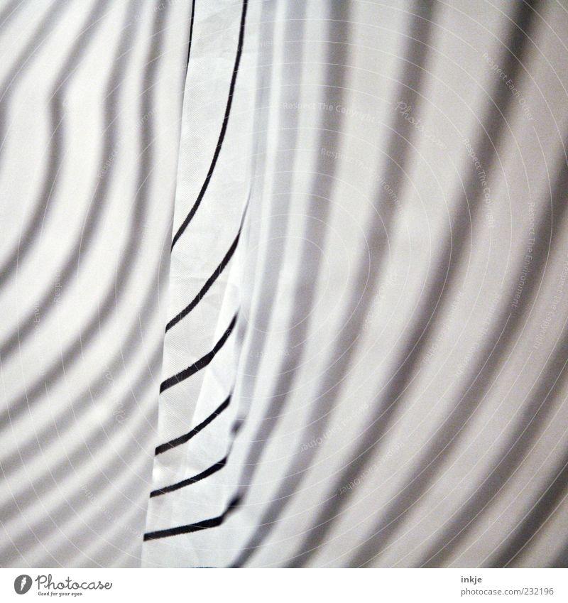 Abraham sprach zu Bebraham,.... weiß schwarz Linie Streifen gestreift Zebra abstrakt Zebrastreifen Strukturen & Formen Muster Duschvorhang
