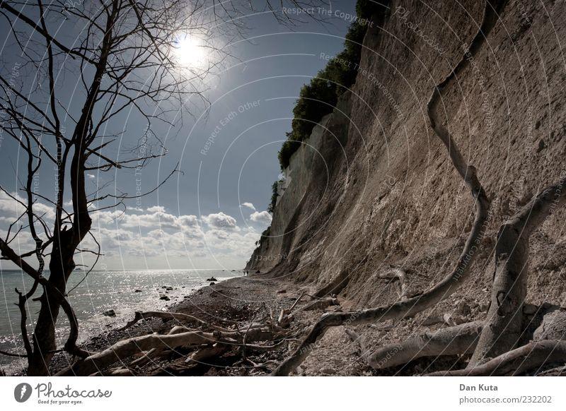Auf-, Über- und Durchstieg Himmel Natur Wasser Ferien & Urlaub & Reisen Sonne Sommer Wolken Landschaft Sand Küste braun Ast Ostsee steil Rügen Kreidefelsen
