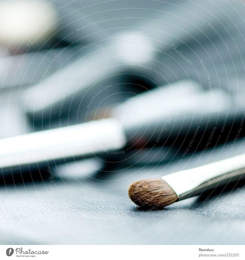 Schönmacher² Pinsel grau Visagist Schminken Borsten Tiefenschärfe Menschenleer Unschärfe silber glänzend liegen Symbole & Metaphern Farbfoto Innenaufnahme