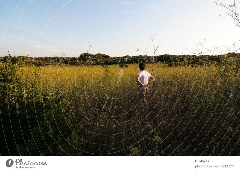 Familienerbe - Wiese, Nord Sardinien, Italien Mensch Mann Natur grün Sommer Einsamkeit ruhig Erwachsene gelb Leben Landschaft Gras Denken Feld Rücken