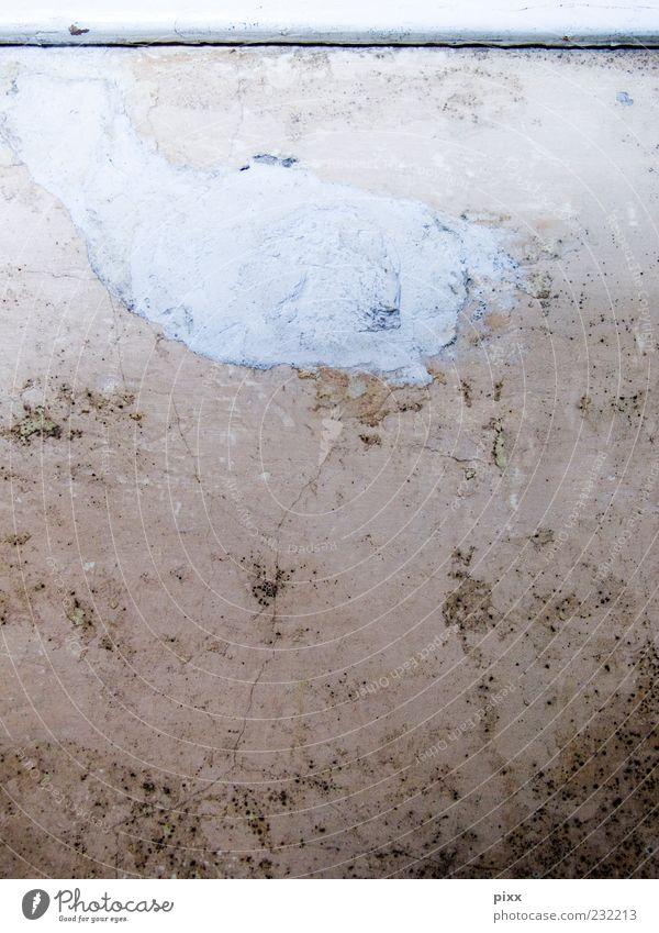 °°°Moby Dick taucht ab°°° alt weiß Wand Mauer braun kaputt Vergänglichkeit Vergangenheit Verfall Reparatur Oberflächenstruktur fehlerhaft spachteln