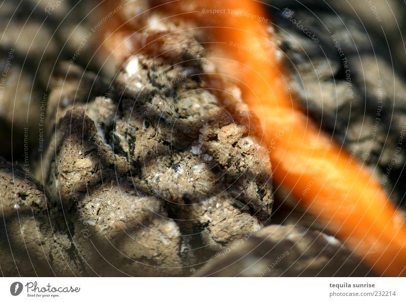 Es ist angegrillt! Grill Grillrost Grillkohle Grillsaison heiß gelb grau Flamme Farbfoto Außenaufnahme Nahaufnahme Detailaufnahme Muster Licht Schatten