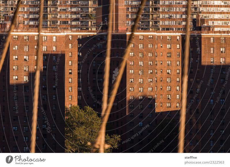 Wohnen in der Stadt IV überbevölkert Haus Fassade Häusliches Leben Plattenbau New York City Manhattan Schattenspiel Brooklyn Bridge trist Farbfoto Außenaufnahme