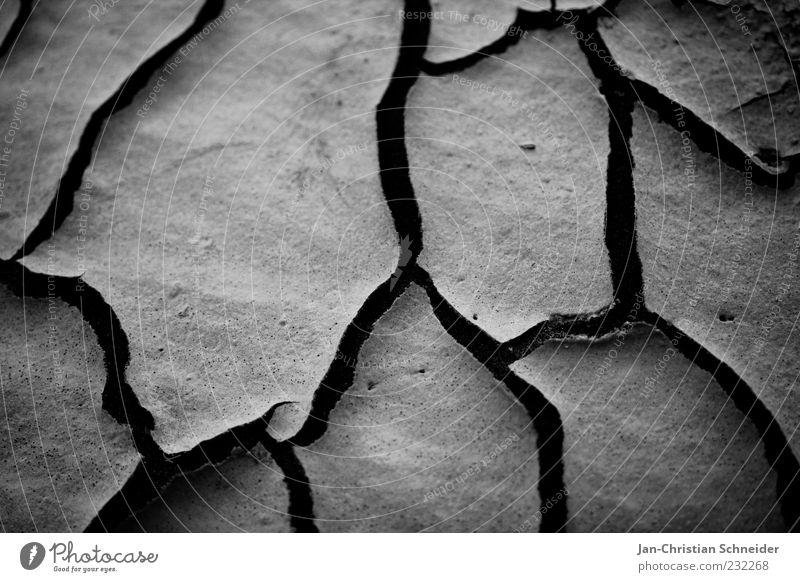 trocken Erde Sand Klima Klimawandel Dürre Umwelt Schwarzweißfoto Detailaufnahme Makroaufnahme Menschenleer Hintergrund neutral