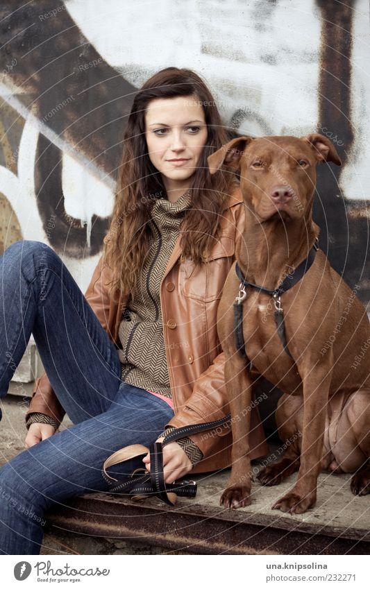 frau mit hund Junge Frau Jugendliche Erwachsene 1 Mensch 18-30 Jahre Jeanshose Jacke brünett langhaarig Tier Haustier Hund beobachten festhalten sitzen warten