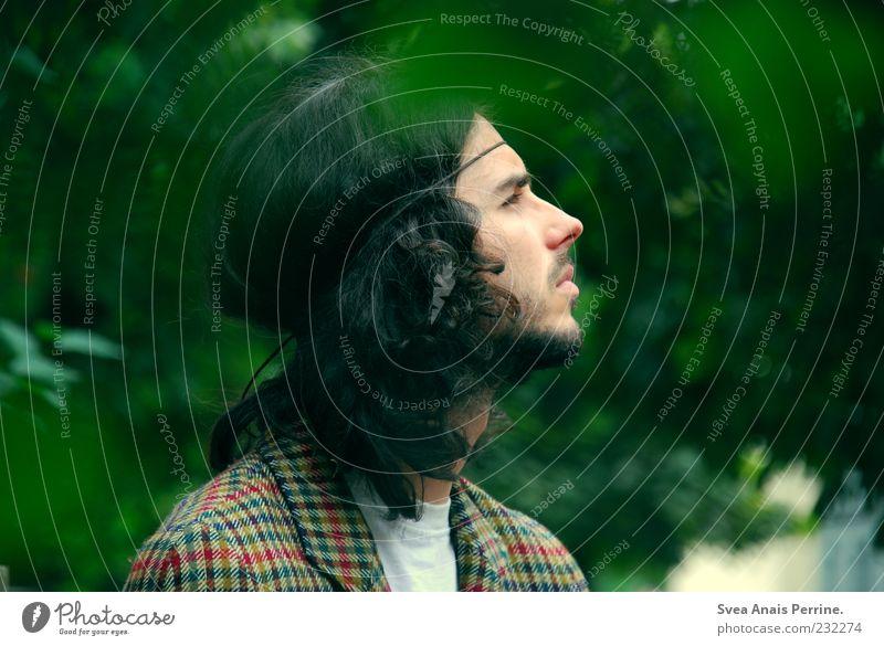 profil. Stil maskulin Junger Mann Jugendliche Erwachsene Haare & Frisuren Gesicht 1 Mensch 18-30 Jahre langhaarig Locken Blick außergewöhnlich natürlich Neugier