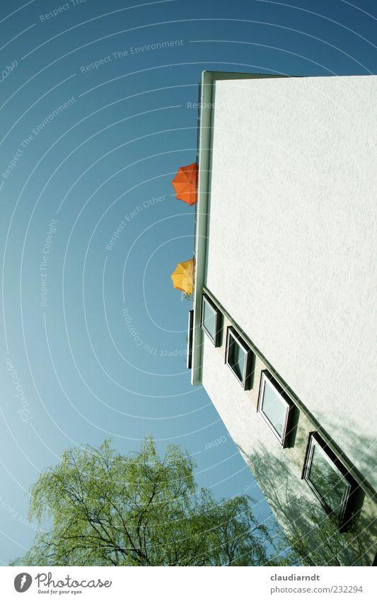 Sonnendeck Braunschweig Haus Hochhaus Gebäude Mauer Wand Fassade Fenster Dach Erholung Sonnenschirm Dachterrasse Baum Birke hoch Froschperspektive einfach