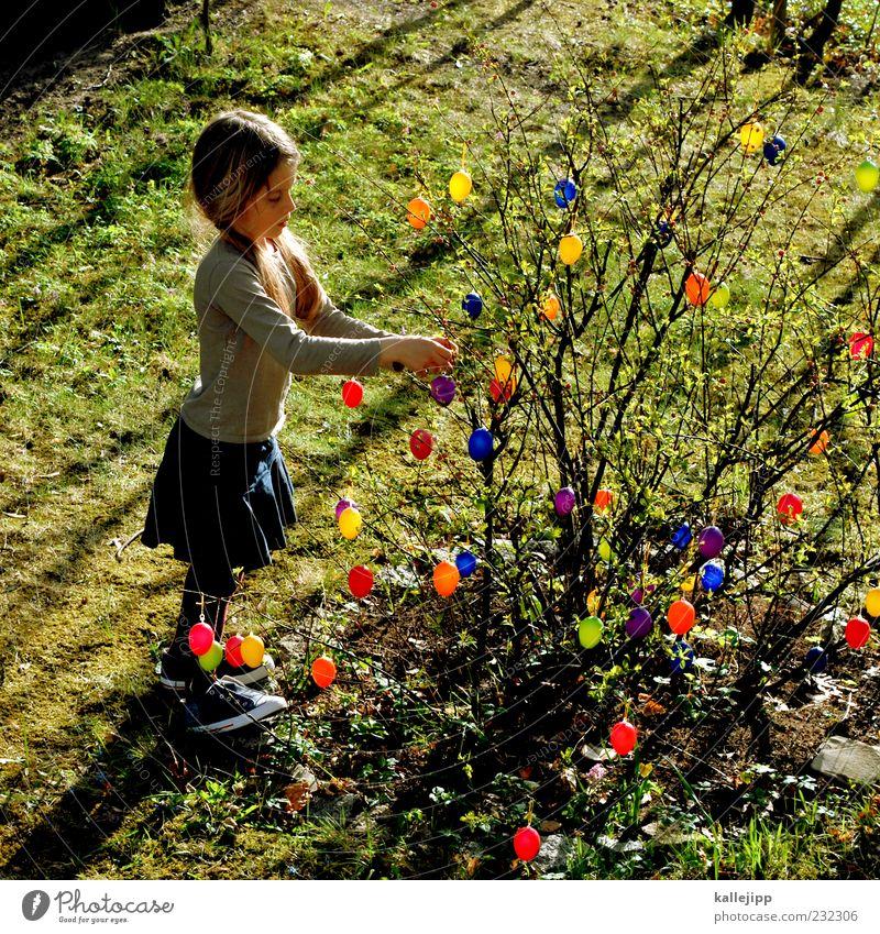 vorfreude Mensch Kind Pflanze Mädchen Freude Wiese Leben Spielen Glück Garten Kindheit Feste & Feiern stehen Lifestyle Sträucher Ostern