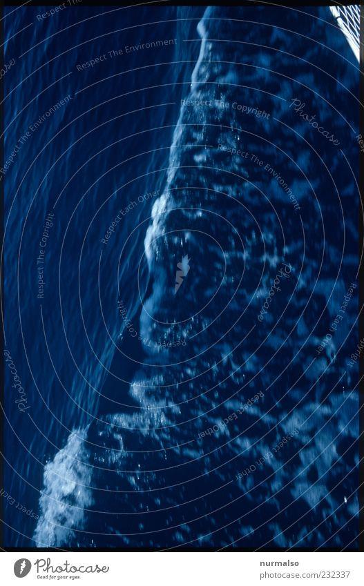 Bugwelle Ferien & Urlaub & Reisen Ausflug Freiheit Segeln Umwelt Natur Wasser Wind Sturm Wellen Meer Bewegung Flüssigkeit natürlich Stimmung Farbfoto