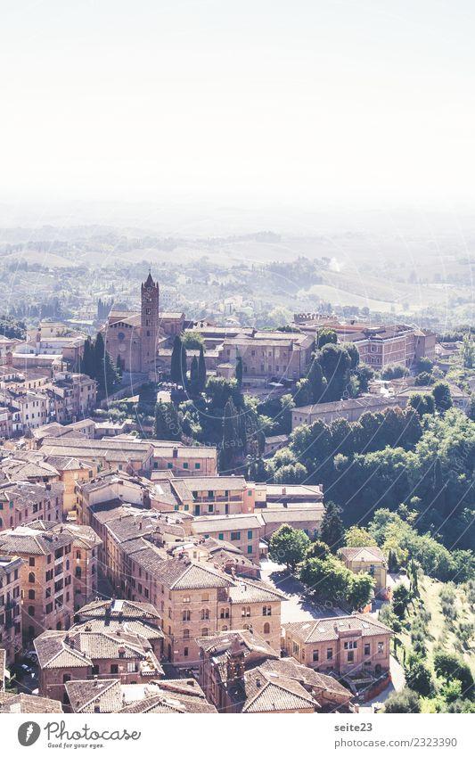 Siena von oben – Toskana, Italien Himmel Ferien & Urlaub & Reisen Sommer Stadt Landschaft Baum Haus Architektur Tourismus braun Häusliches Leben Ausflug