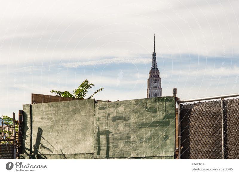 Empire State Building hinter einer Wand Skyline Stadt New York City Manhattan williamsburg Brooklyn Silhouette Zaun Holzwand Palme Schönes Wetter Farbfoto