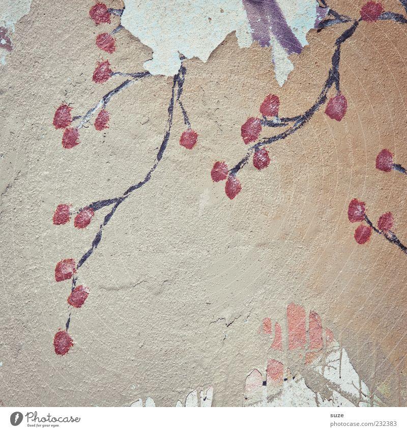 Frühjahrsputz Design Blume Blüte alt authentisch dreckig Putz Wand Schmiererei Dekoration & Verzierung Farbfoto Gedeckte Farben Außenaufnahme Detailaufnahme