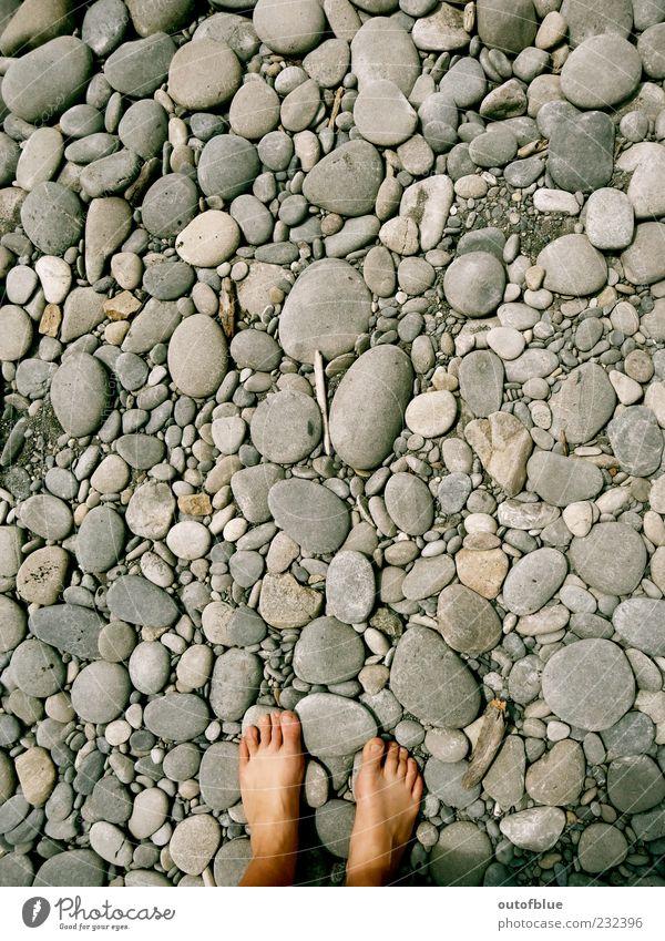 Barfuß auf Stein Fuß Erde Strand Sand kalt rund grau ruhig Gedeckte Farben Außenaufnahme Vogelperspektive Kieselsteine Steinstrand Textfreiraum oben