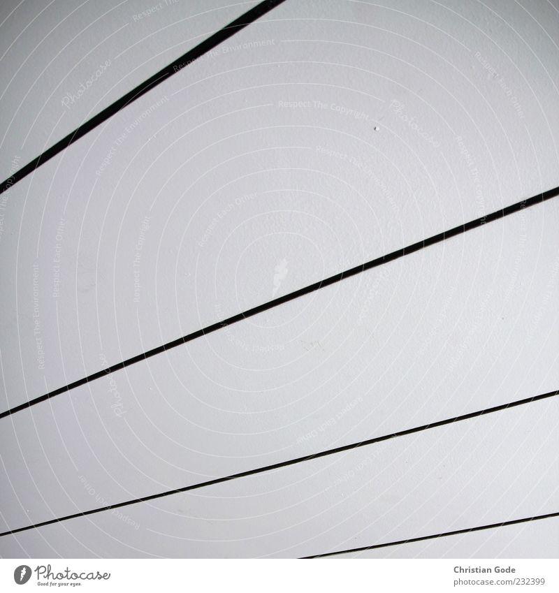 Streifen Holz weiß schwarz Decke Linie Verlauf diagonal Bahn trist Innenaufnahme Menschenleer Kunstlicht Starke Tiefenschärfe Froschperspektive Textfreiraum